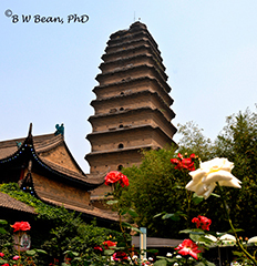 Small Goose Pagoda and Garden - Xian. bwb-images