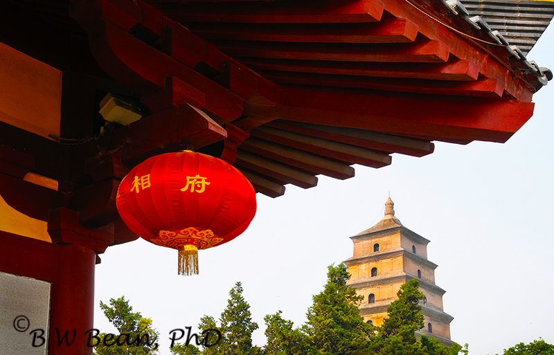 Great Goose Pagoda - Xian China bwb-images