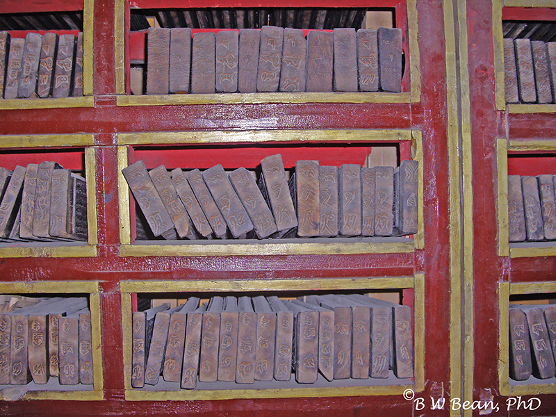 Books In Tibet Temple