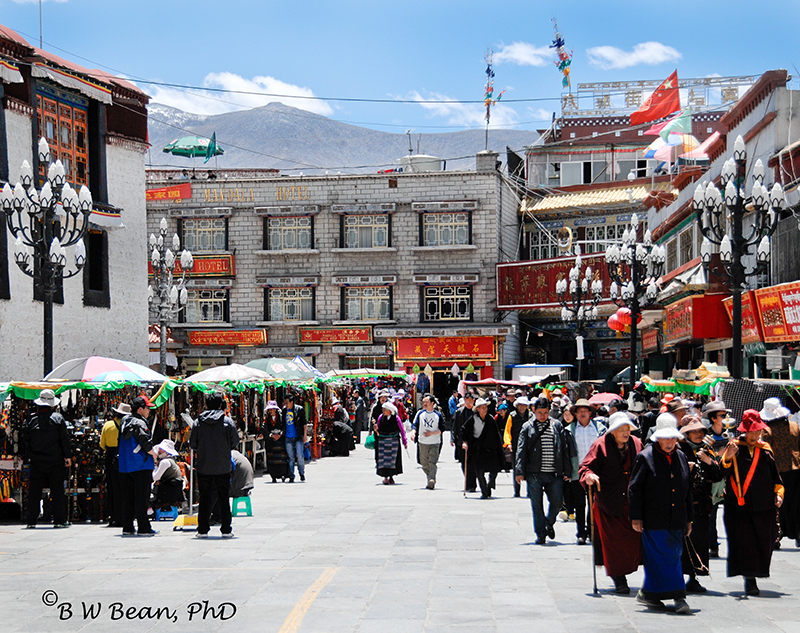 tibet sq 3