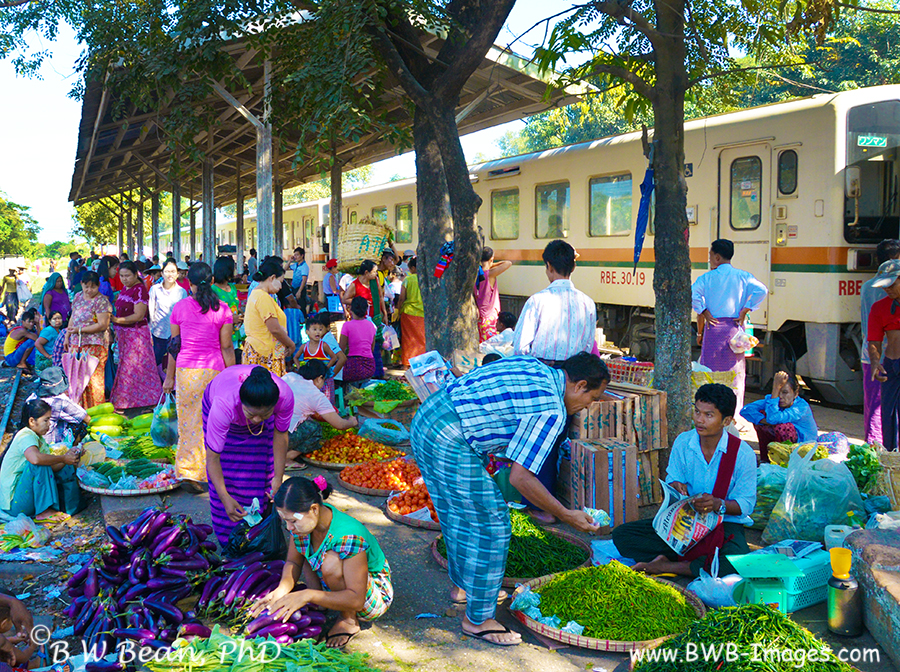 circle-train-market