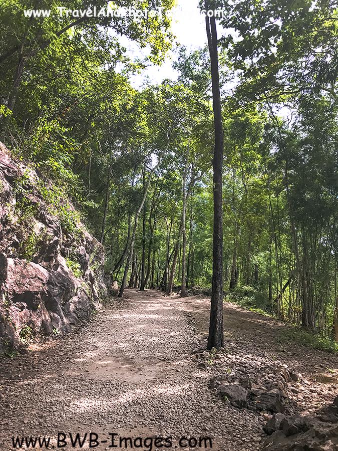 HFP Trail 1