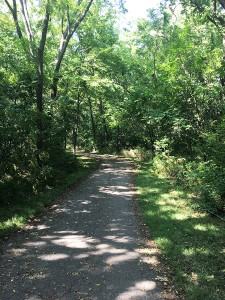 KC Ride path 1