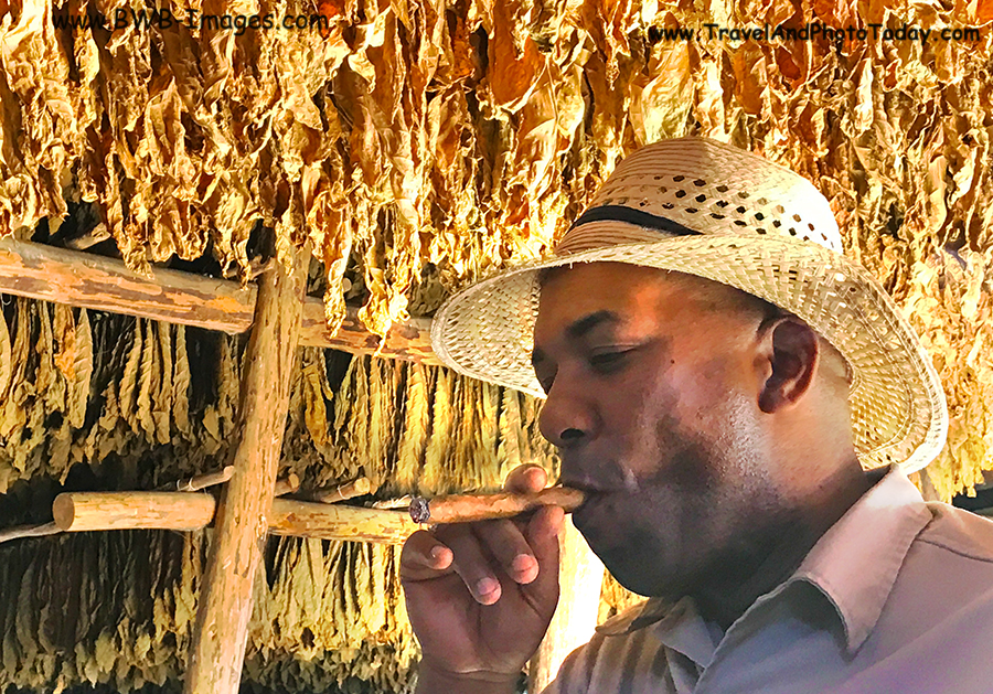 cigar guide