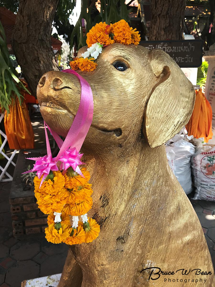 Visit Wat Ket Karam - Chiang Mai, Thailand