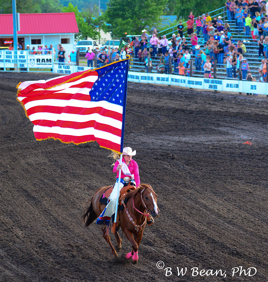 rodeo flag rider