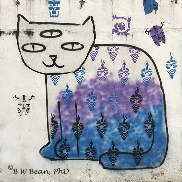 Chiang Mai Street Art Cat